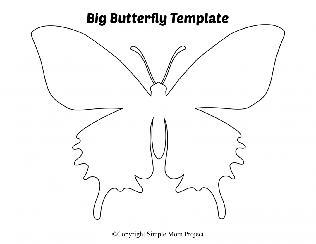 Pin On Butterfly Printable