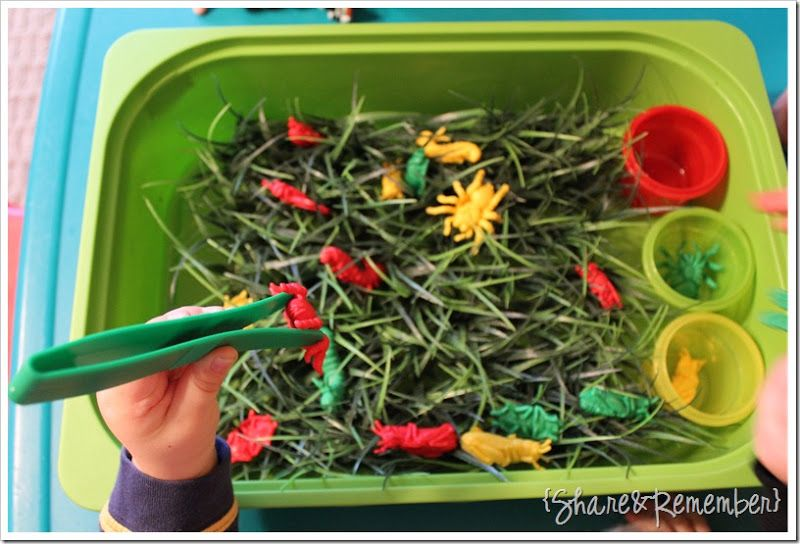 bugs in the grass sensory bin from Share and Remember