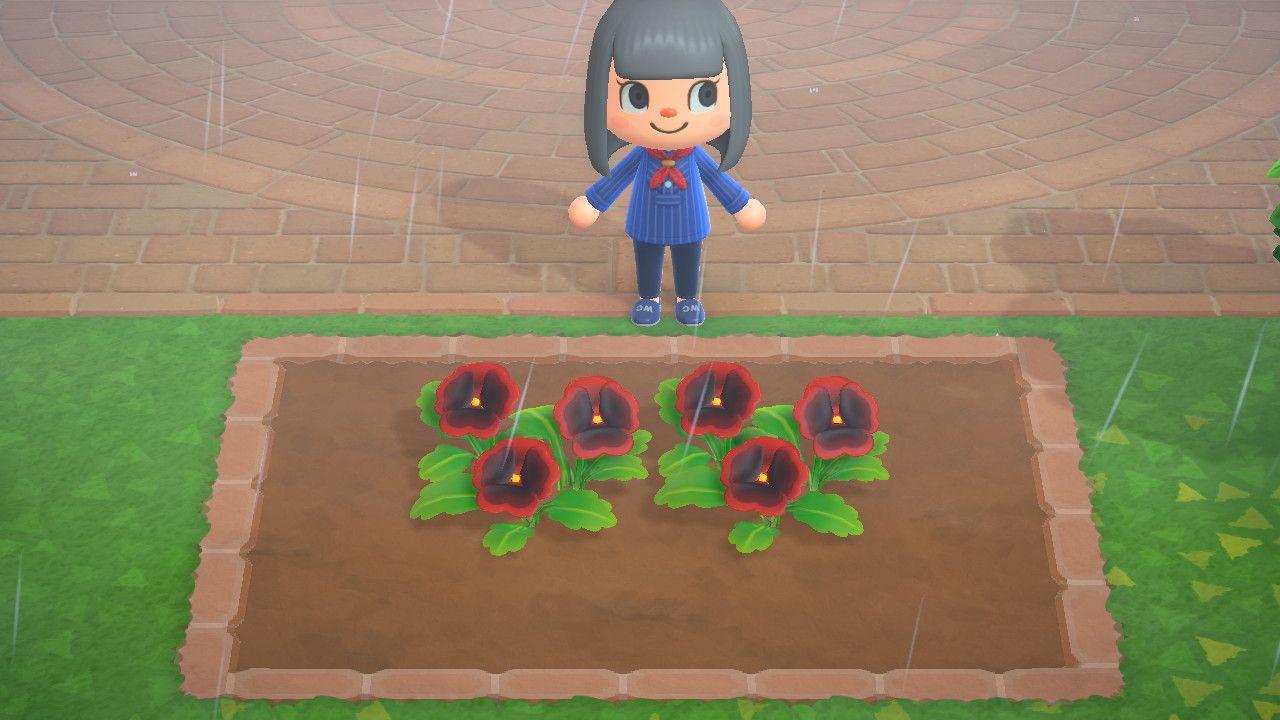 地面 花 あつ森