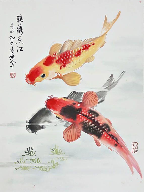 Color Koi Fish Watercolor Painting On Rice Paper Mounted With