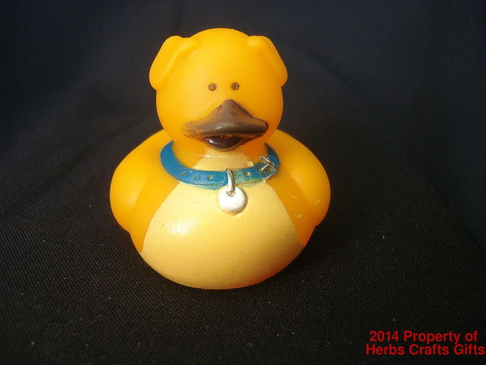 Dog Yellow Rubber Duck Duckie New 2 Inch Ducky Blue Collar Dog