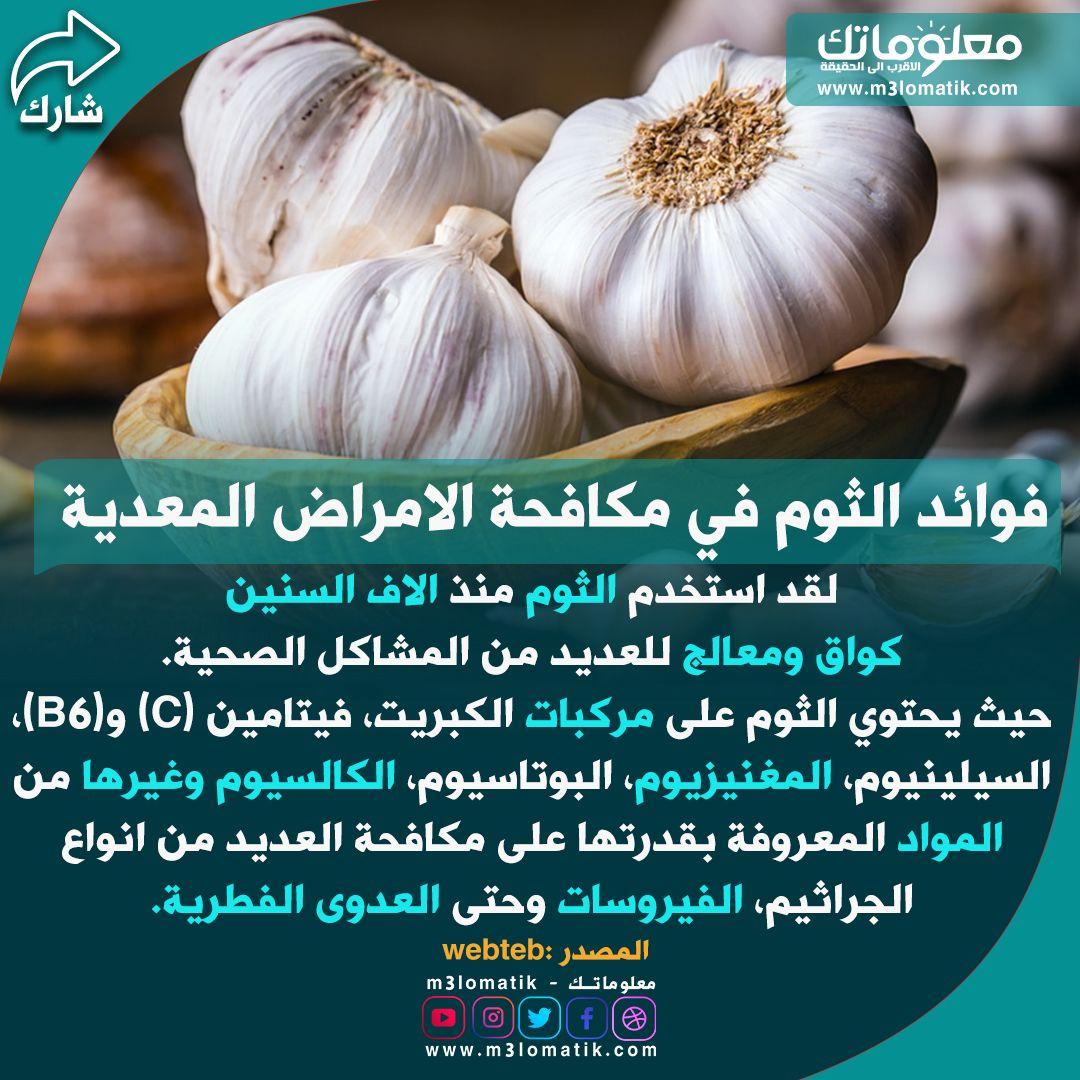فوائد الثوم في مكافحة الامراض المعدية Garlic Vegetables Food