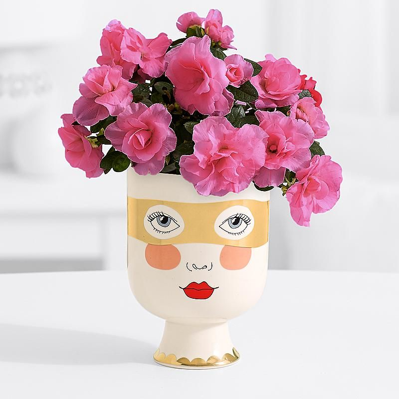 Supermom Azalea Pink Azaleas Flowers For Everyone Flower Arrangements