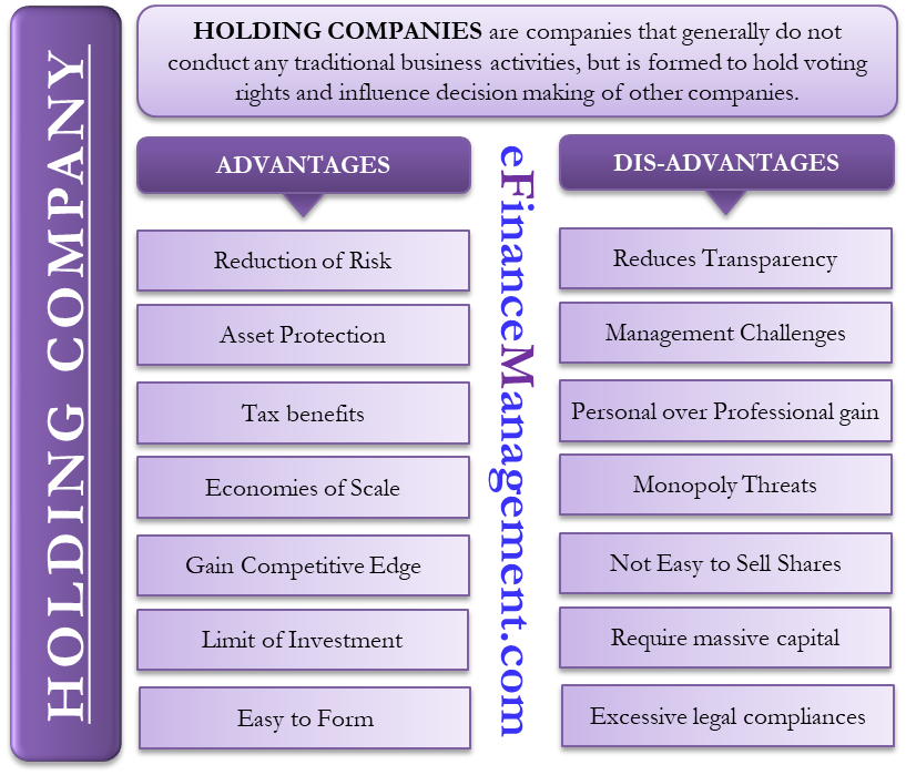 Advantages and Disadvantages of Holding Company Holding