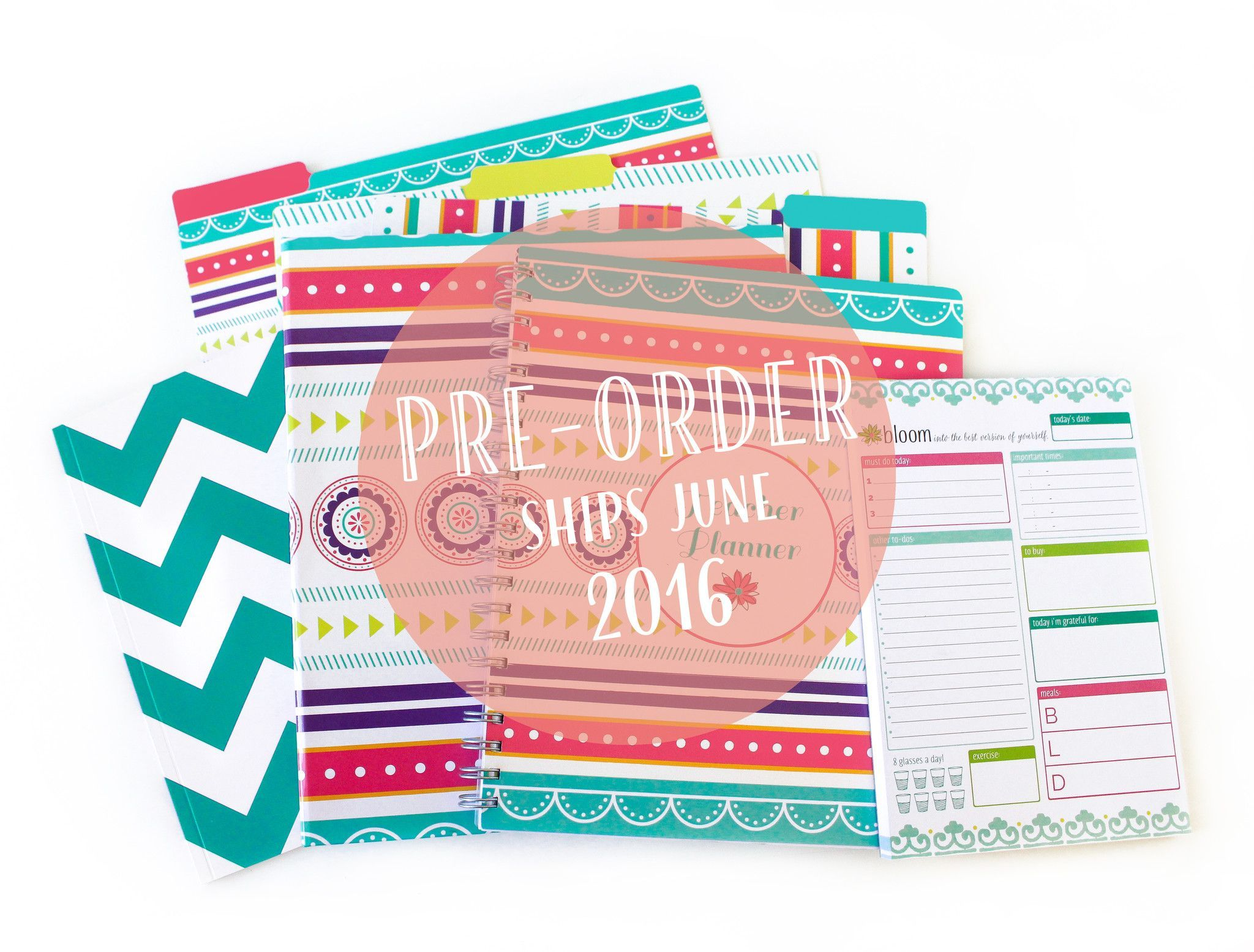 Back To School Teacher Bundle - Pre-Order