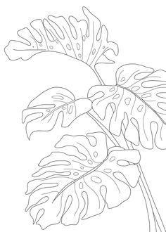 Line Art Monstera Leaves Mini Art Print