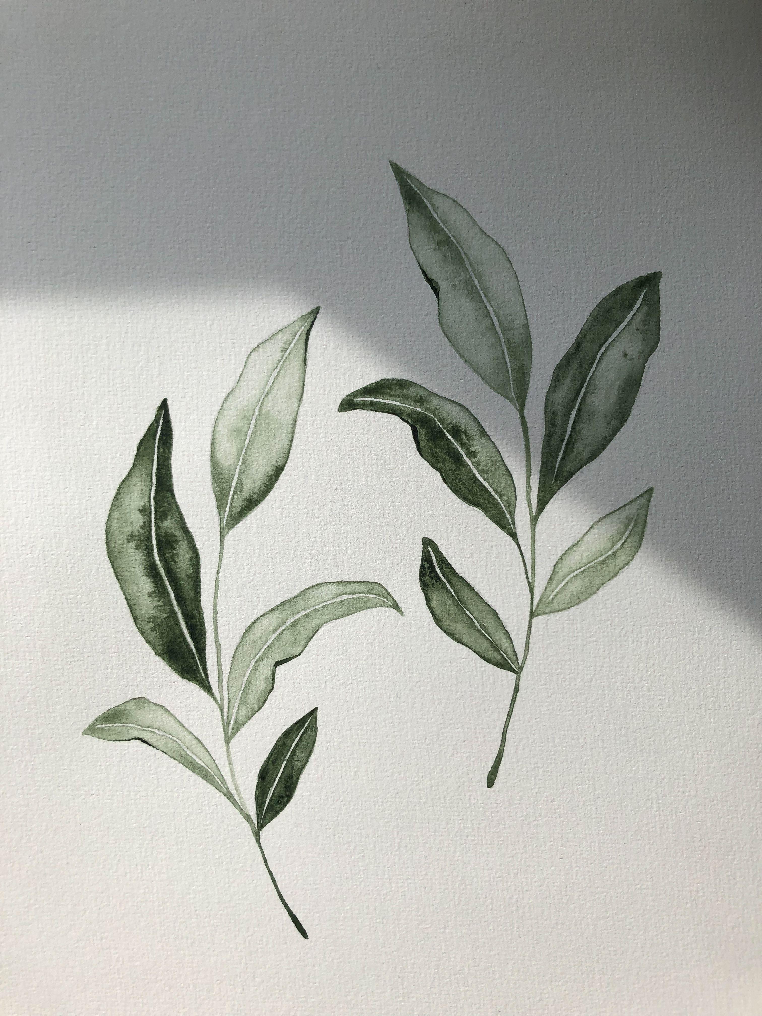 A watercolor piece by Skyla Design #watercolors #greenery #branch
