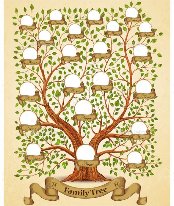 Family Tree Wall Charts Free Printable Family Tree Template 29