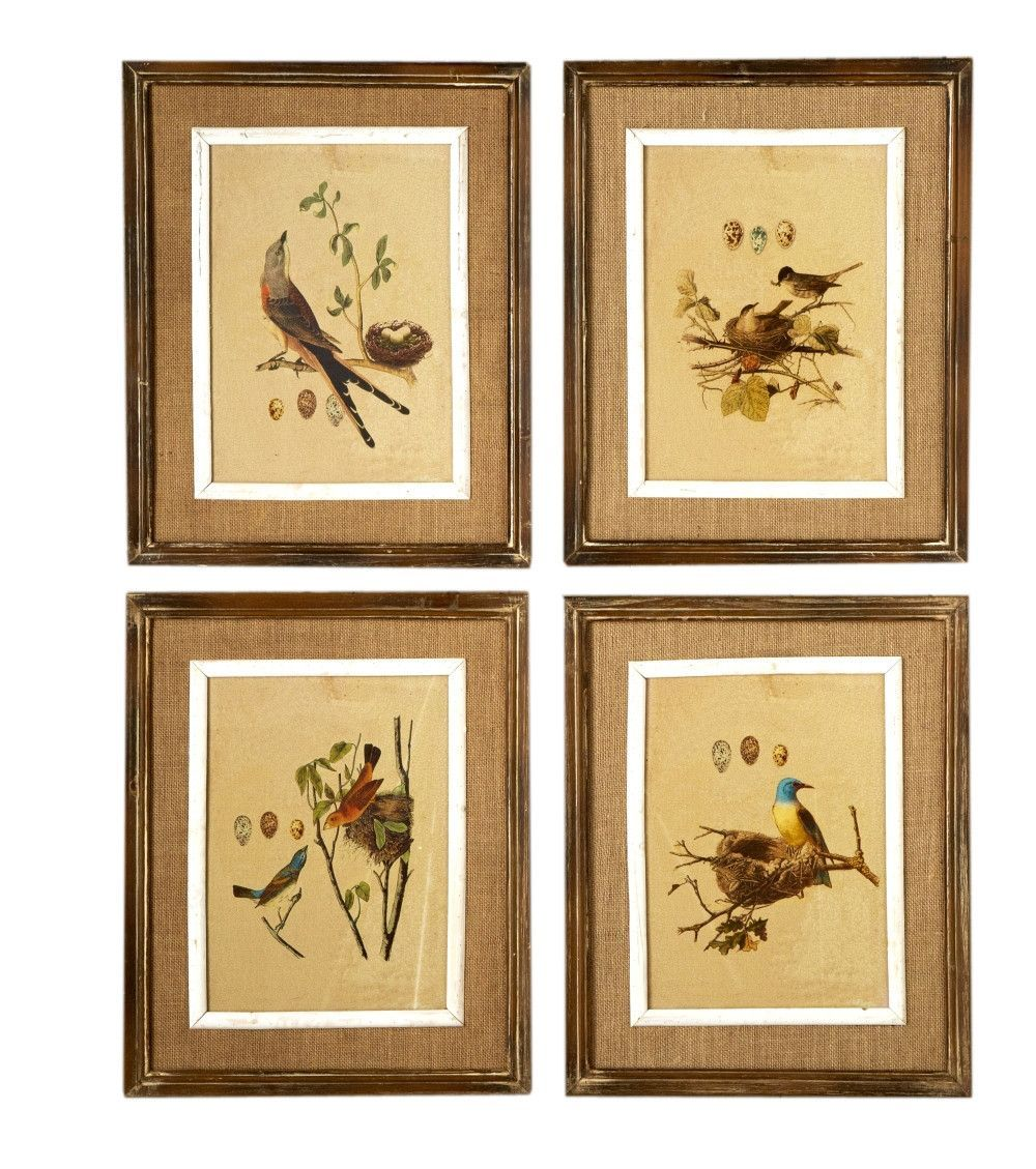 French Market Nested Bird 4 Piece Framed Graphic Art Set (Set of 4 ...
