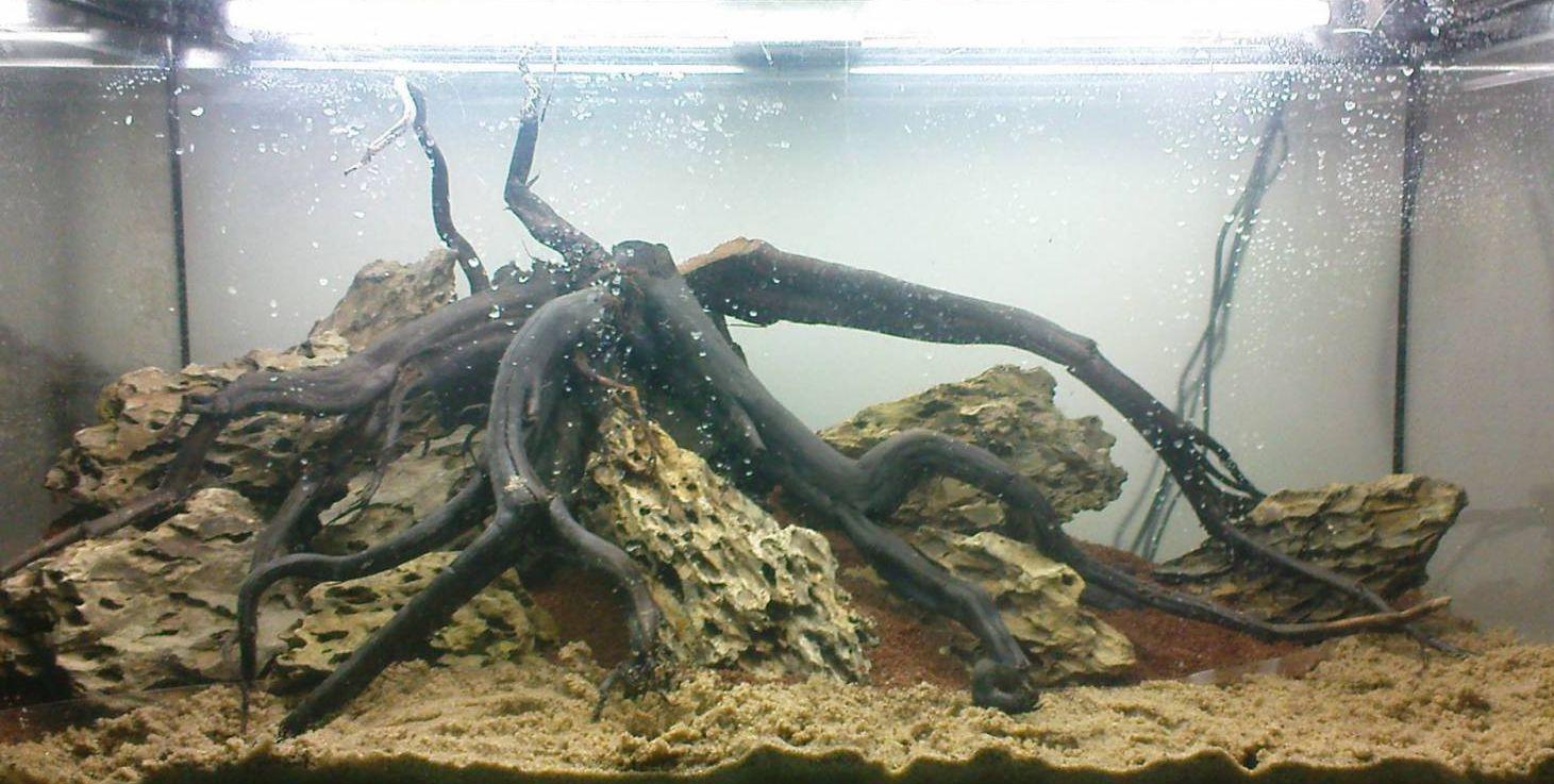bildergebnis f r aquarium steine aquascaping aquarium. Black Bedroom Furniture Sets. Home Design Ideas
