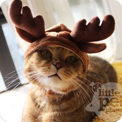 Reindeer Antlers Plush Pet Dog Costume Hat Dog Antlers Pet Costumes Pets