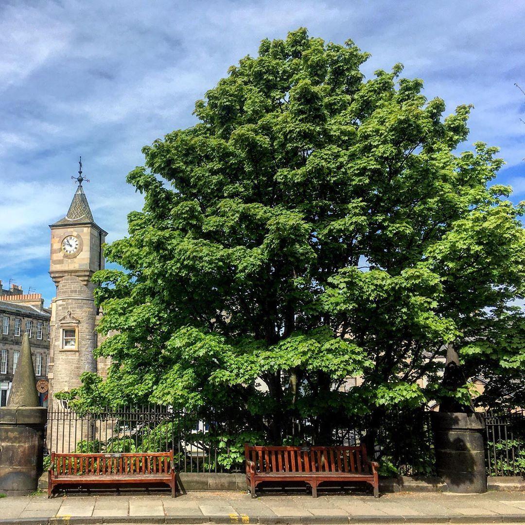 "stockbridgeedinburgh.com on Instagram: ""Hamilton Place. . . .  #stockbridge #stockbridgeedinburgh #thisisedinburgh #edinburghlife #igersedinburgh #edinburgh #prettycities…"""
