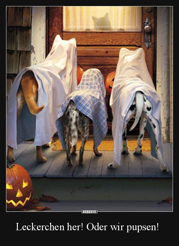 leckerchen her oder wir pupsen lustige bilder spr che witze echt lustig happy halloween. Black Bedroom Furniture Sets. Home Design Ideas