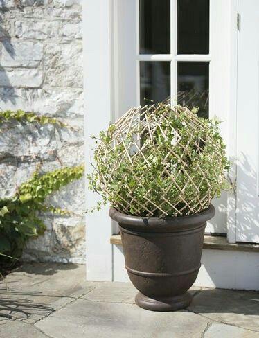 Gardeners Supply Company, Expandable Globe Trellis