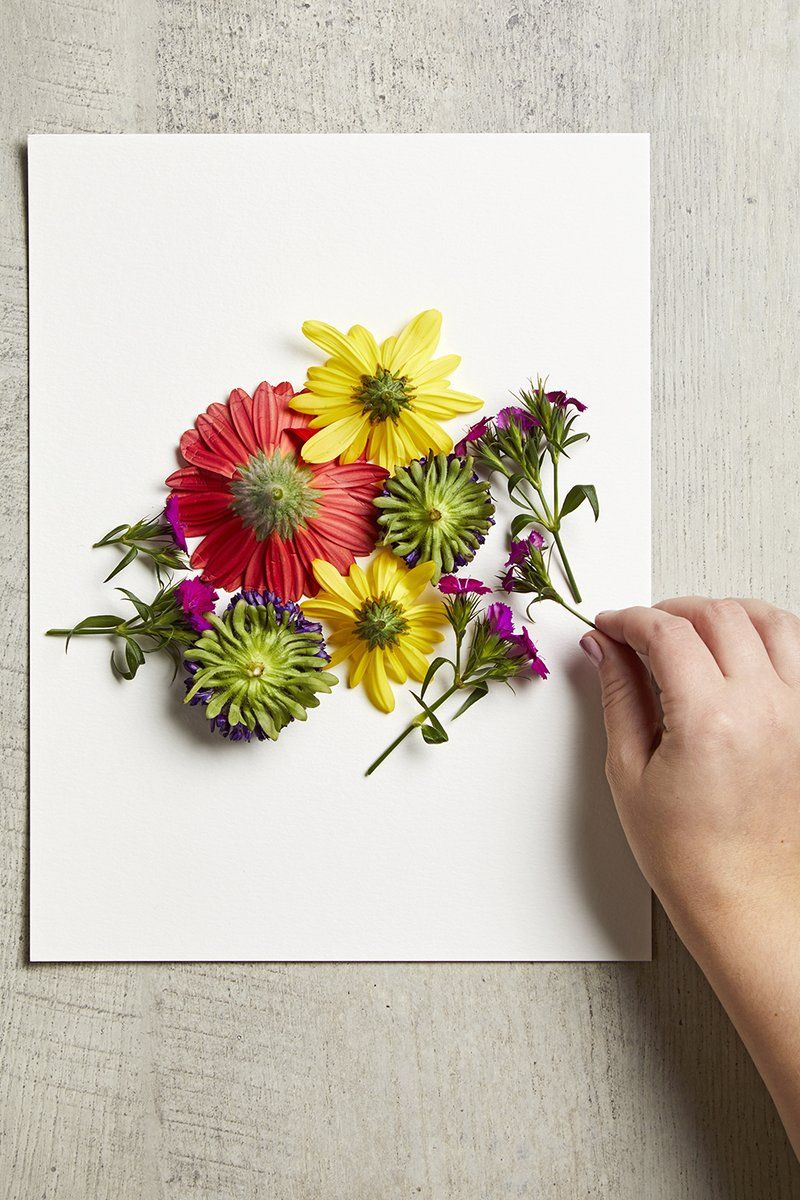 This Simple DIY Turns Fresh Flowers Into Beautiful Art is part of Floral craft - A charming addition to your gallery wall!