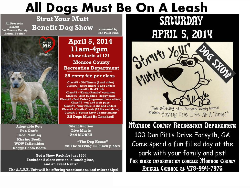 Dog Show Pet friendly Pet Event Family Event Monroe County