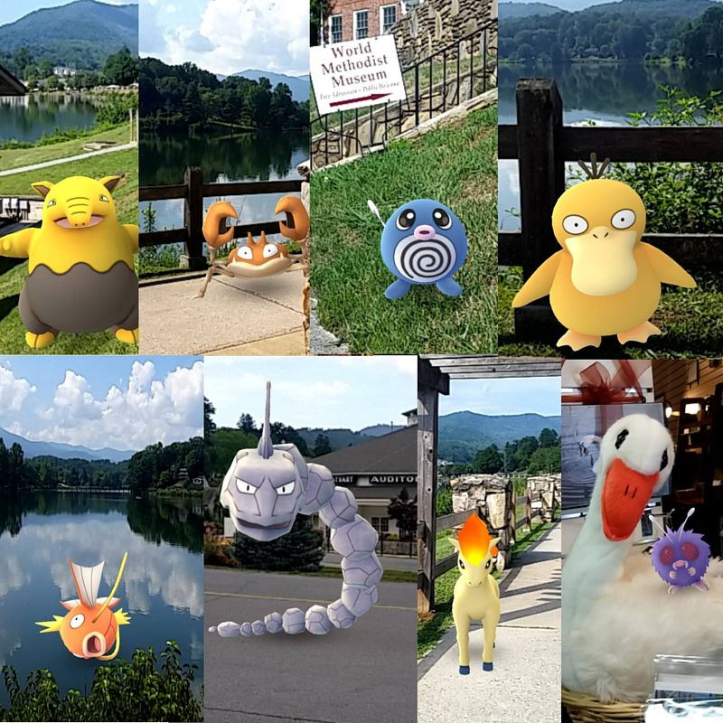 We Have Six Gyms And More Than 16 Pokestops At Lake Junaluska It S The Perfect Place To Play Pokemongo Lake Junaluska Lake Pokemon Go