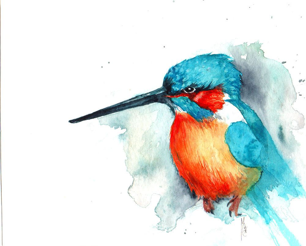 """Dessin Oiseau Mouche tirage d'art : """" oiseau mouche """", aquarelle : dessins par blumat"""