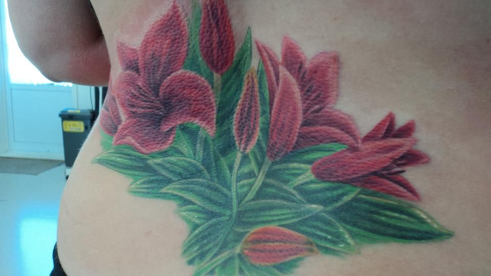 Coverup by Gene Martin New Zealand