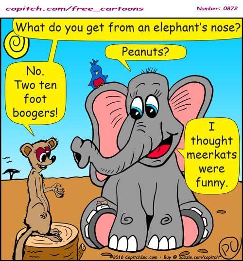0872 Copitch Cartoon Elephant Meerkat Funny Animal Pun Boogers Kid Jokes Peanuts Funny Animals Jokes For Kids Funny
