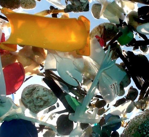 Plastic trash floating in the ocean #oceanthreats
