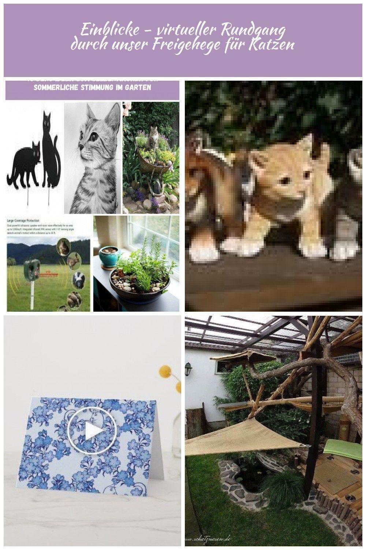 Wenko Vogelschreck Katzen 2er Set Vertreiben Verjagen Schreck Scheuchen Garten 2er Cat Catcute Catfood Garten Kat Katzen Vogelschreck Katzengarten