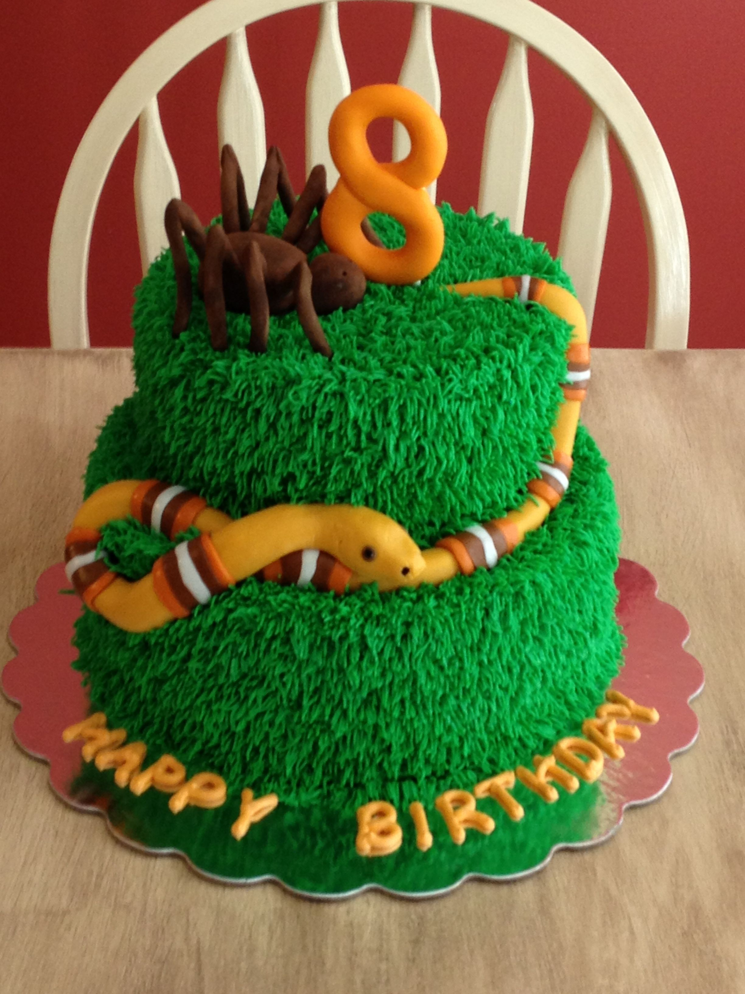 spider and snake cake buggy birthday pinterest snake