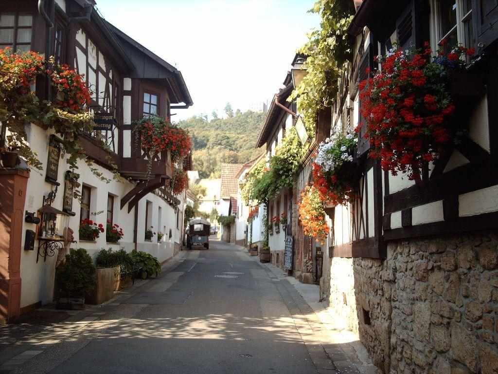 Wine market in germany