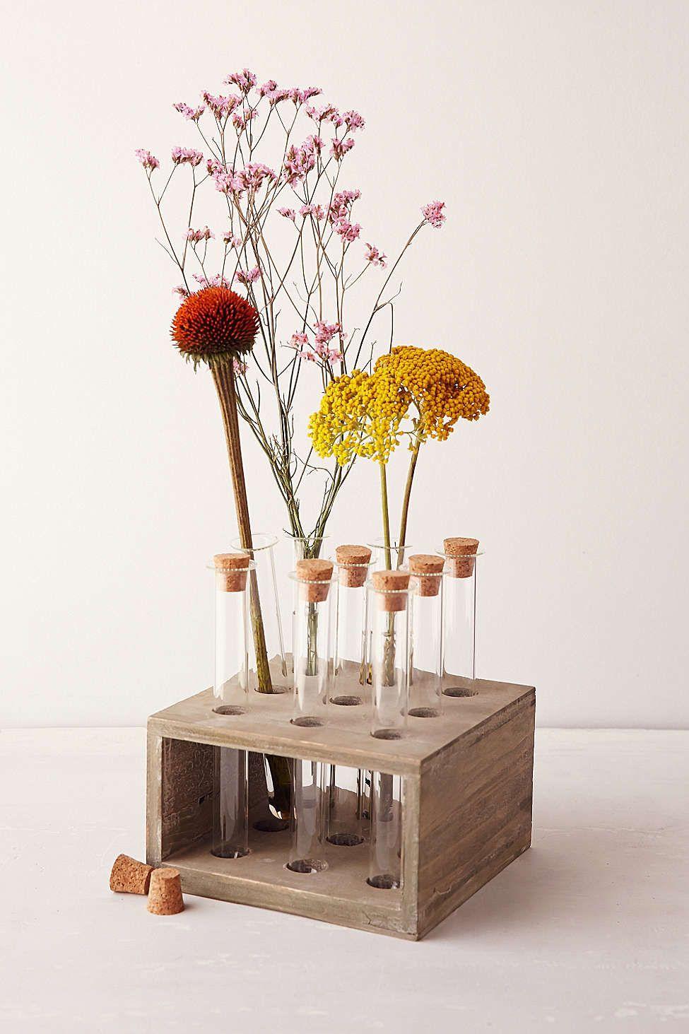 Test Tube Vase Urban Space Tube A Essai Fleurs Bois