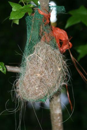 Nesting Material Unique Birdhouse Boutique Bird Nesting Material Unique Bird Houses Unique Gardens