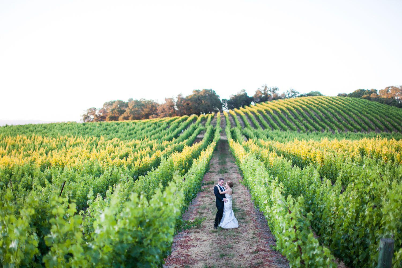 Ariel Tim Chalk Hill Winery Wedding Mi Belle Photographers Chalk Hill Winery Weddings Wine Country Wedding