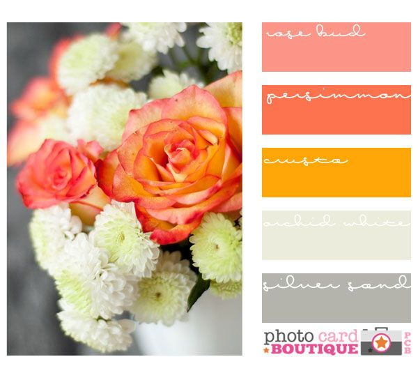 Room colors · Fun tangerine palate! Energizing warms and relaxing cools
