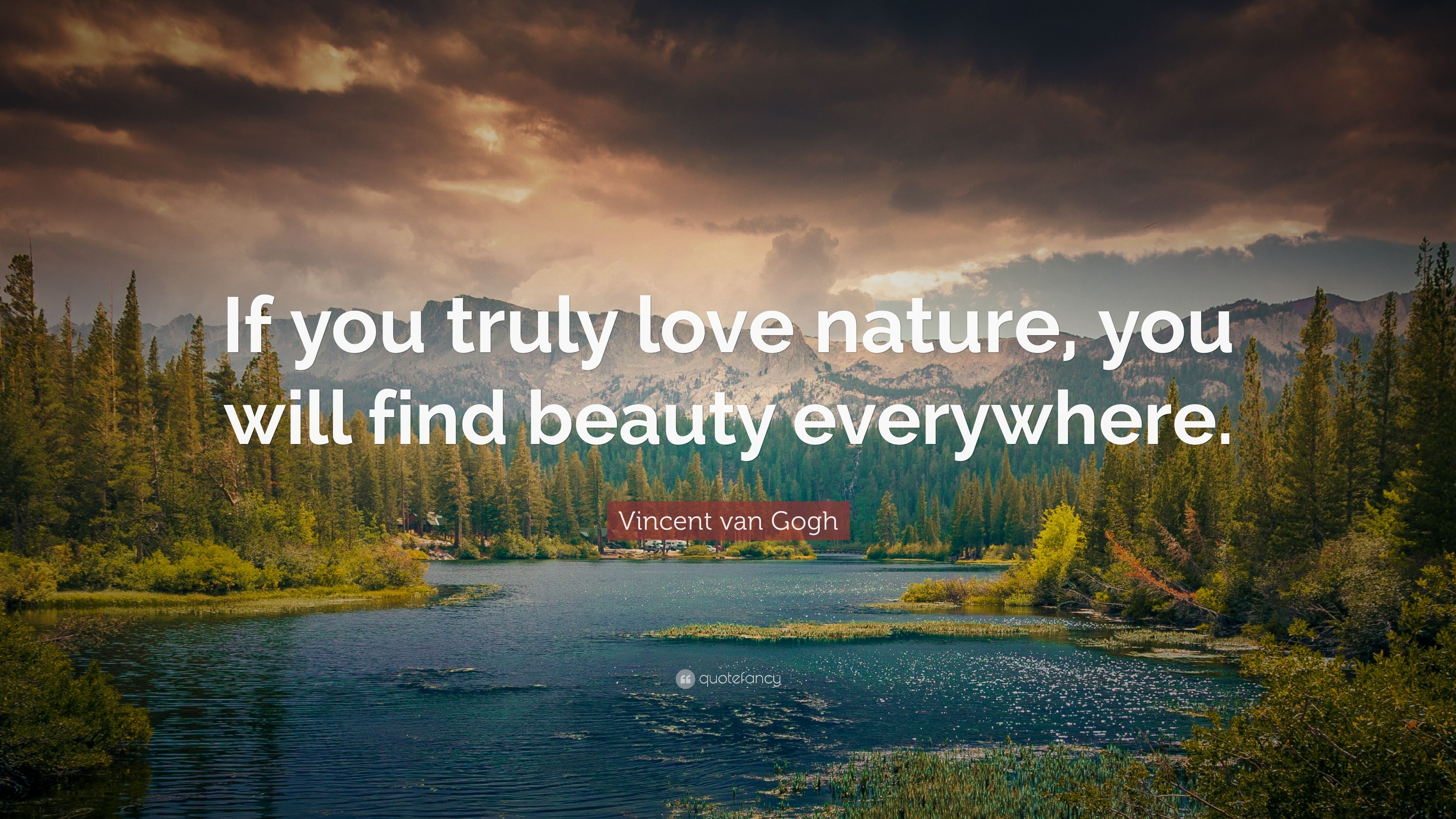 "quotes about nature  Vincent van Gogh Quote: ""If you truly love"