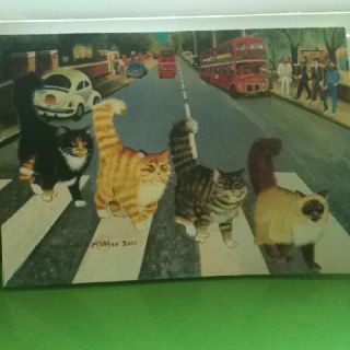 Tabby Road II by artist Elizabeth McAfee, 2001