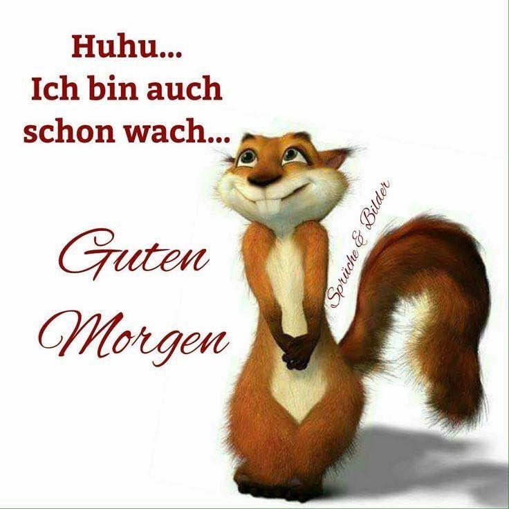 Photo of – guten Morgen, gute Nacht – #gut #gut #morgen #nacht #notitle