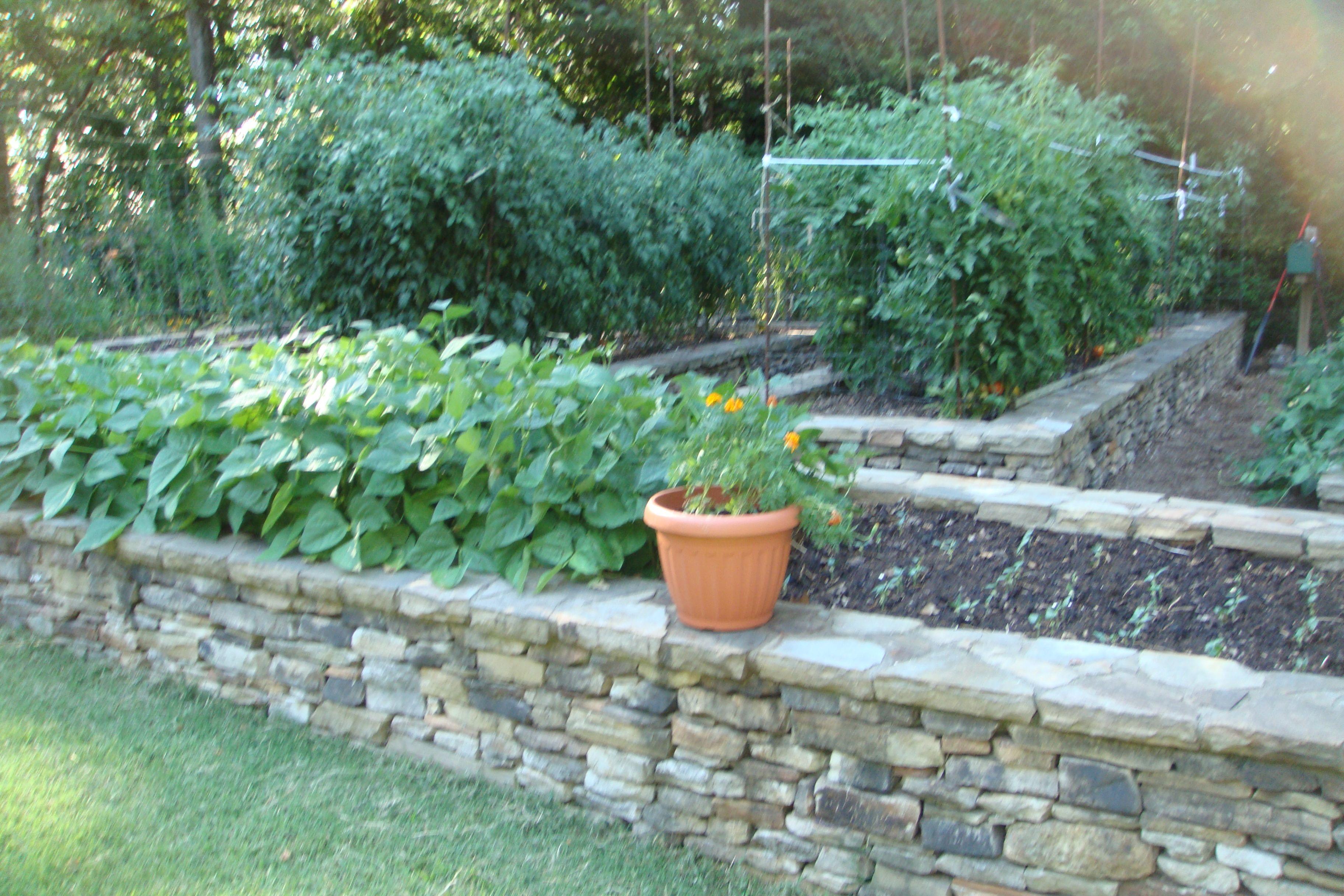 Raised Stone Garden Beds | Garden, Garden stones, Garden beds