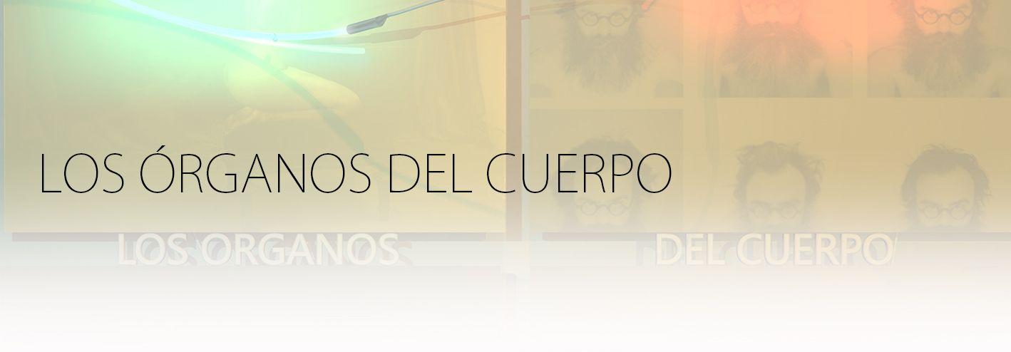 LOS ORGANOS DEL CUERPO. YENY CASANUEVA Y ALEJANDRO GONZALEZ. PROYECTO PROCESUAL ART