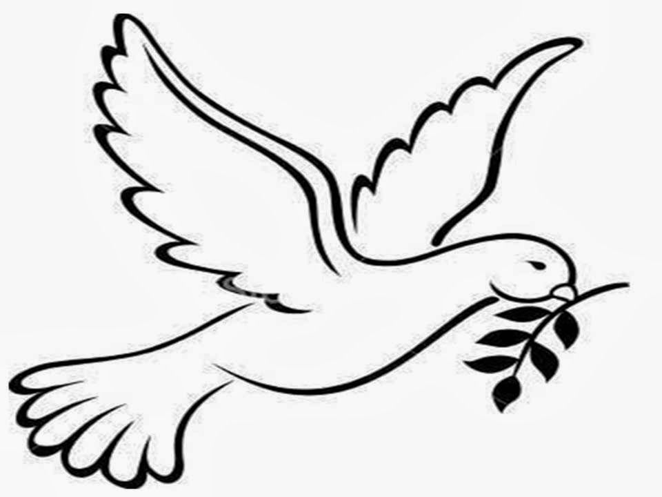 Olive Branches · Peace Dove Coloring Pages ...
