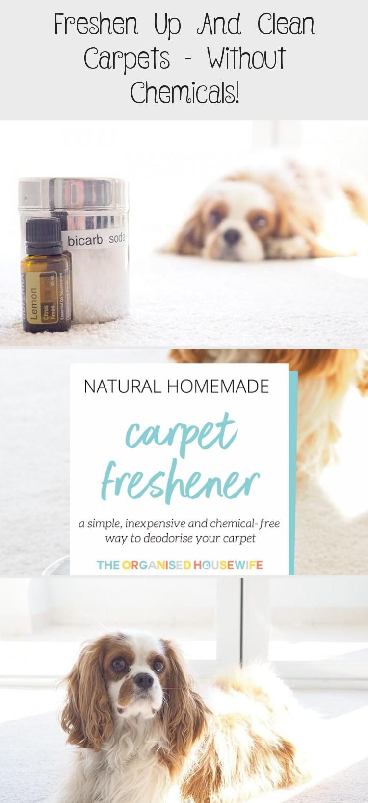 Freshen Up And Clean Carpets Without Chemicals In 2020 How To Clean Carpet Homemade Carpet Cleaning Solution Commercial Carpet Cleaning