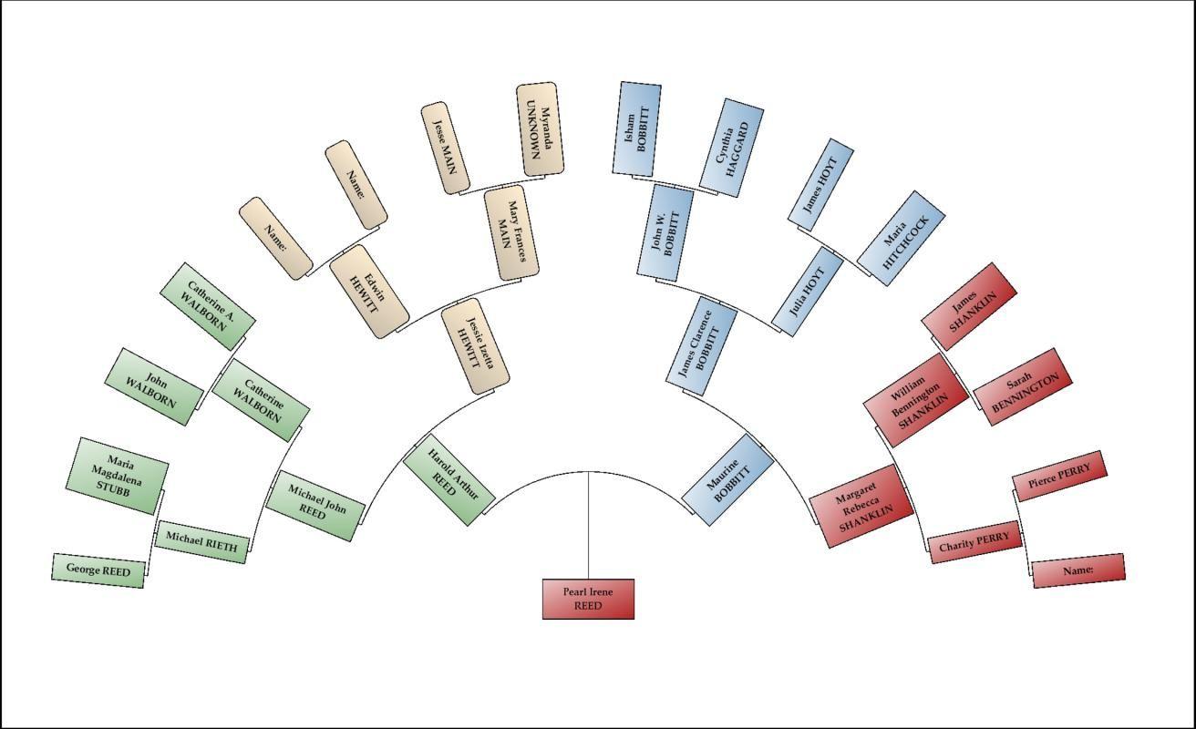 family tree chart maker template pinterest chart maker family