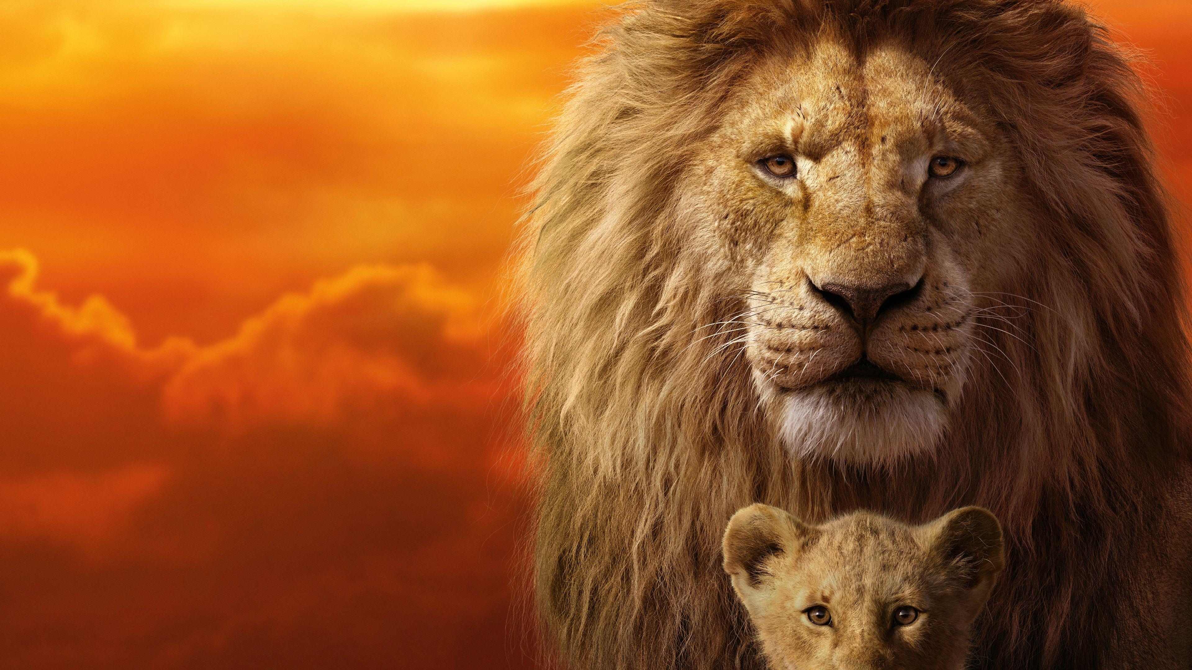 The Lion King The Lion King Wallpapers Simba Wallpapers Movies Wallpapers Lion Wallpapers Hd Wallpapers Disney Wa Lion King 2019 Lion King Movie Lion King