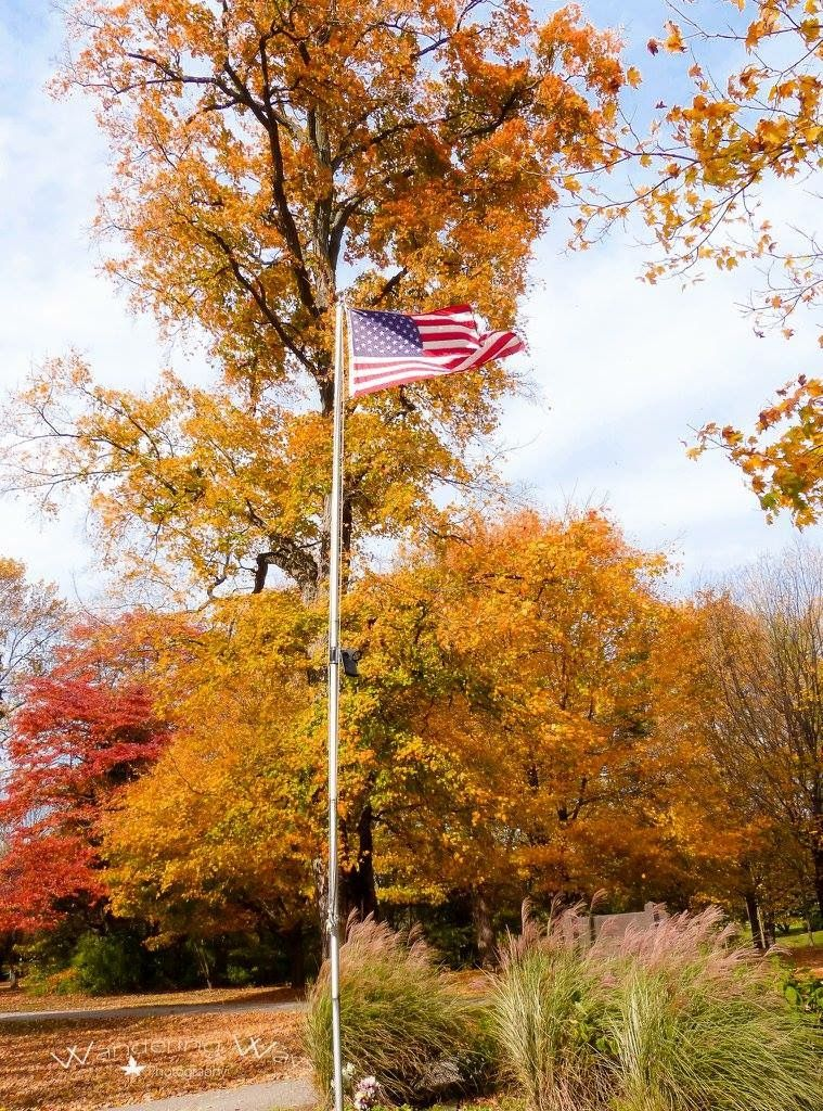 American Flag at Prairie Creek Park in Vigo County Indiana captured by Wandering Ways Photography- Tracy 2016