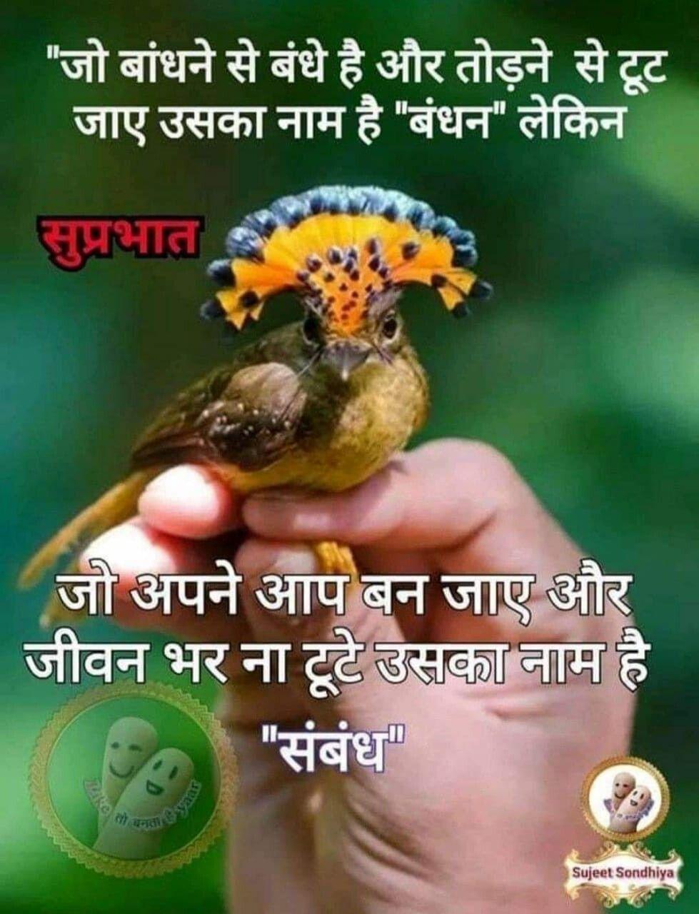 Pin by Jitendra Kapoor on Hindi message   Good morning ...