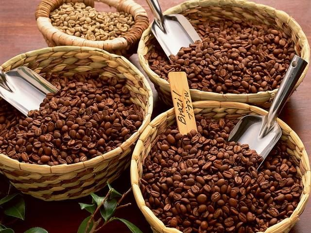 20 Things You Never Knew About Coffee... 11. There are over 50 species of coffee worldwide, but only two, arabic and robusta, are used in commercial coffee production.
