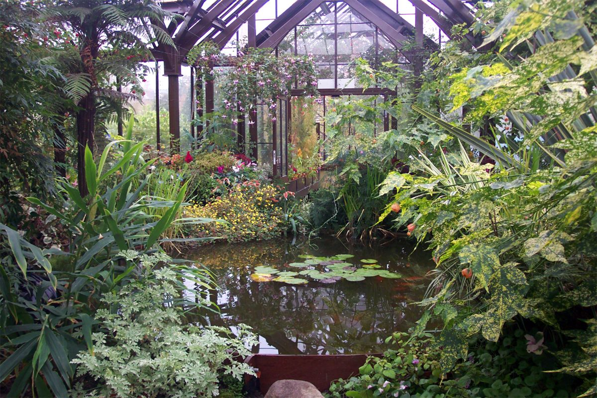 Botanical gardens glasgow, scotland | Most beautiful ...