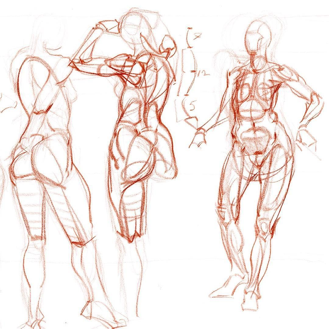 Some basic figure construction demos in a students drawing pad (in ...
