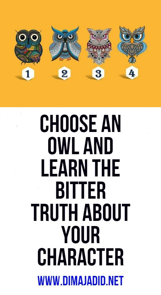 Choose an owl and learn the bitter truth about your