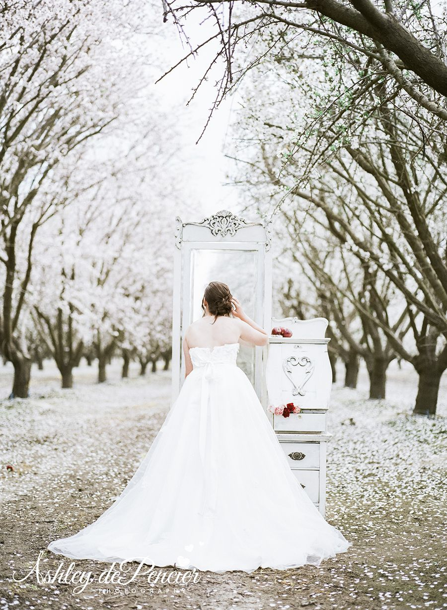 Gorgeous Snow White Themed styled bridal shoot! // Belovely You
