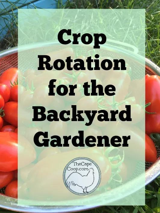 Crop Rotation for the Backyard Gardener