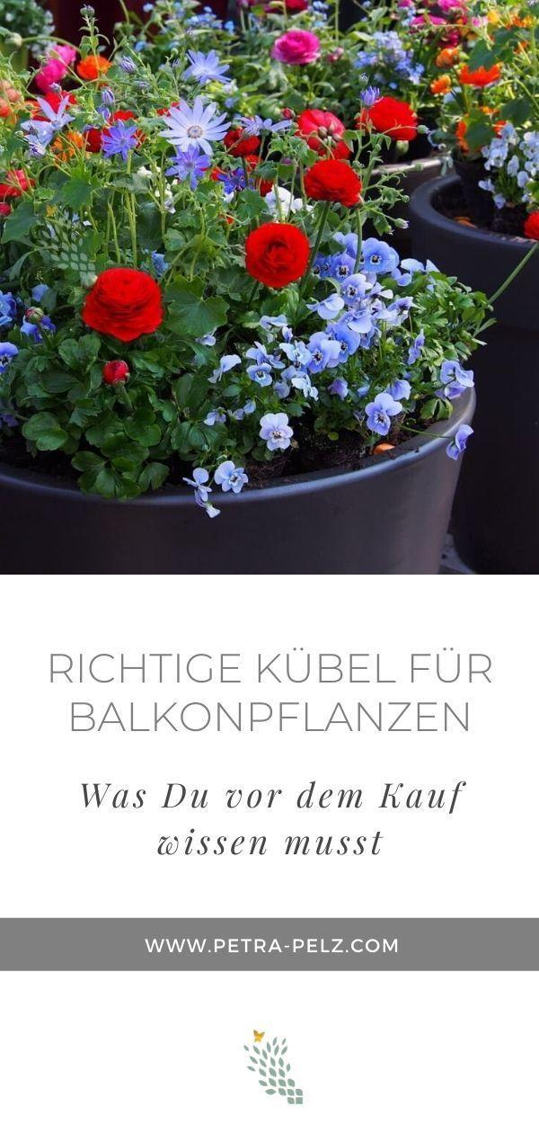 Frühling pflanzen im Pflanzkübel, Blumenkästen, Blumentöpfe
